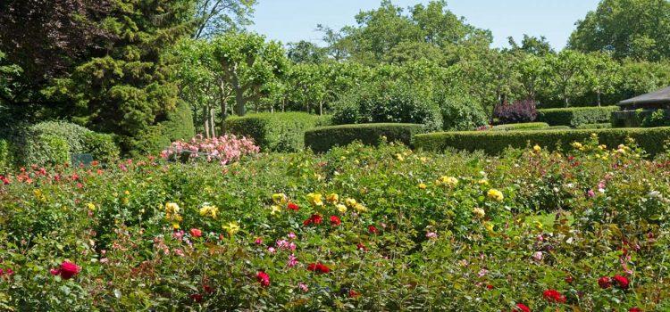 Gartengestaltung Neusäß Bayern