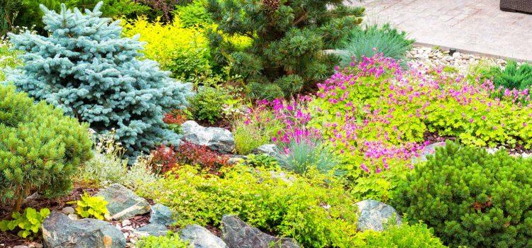 Gartengestaltung Neuwied Rheinland-Pfalz