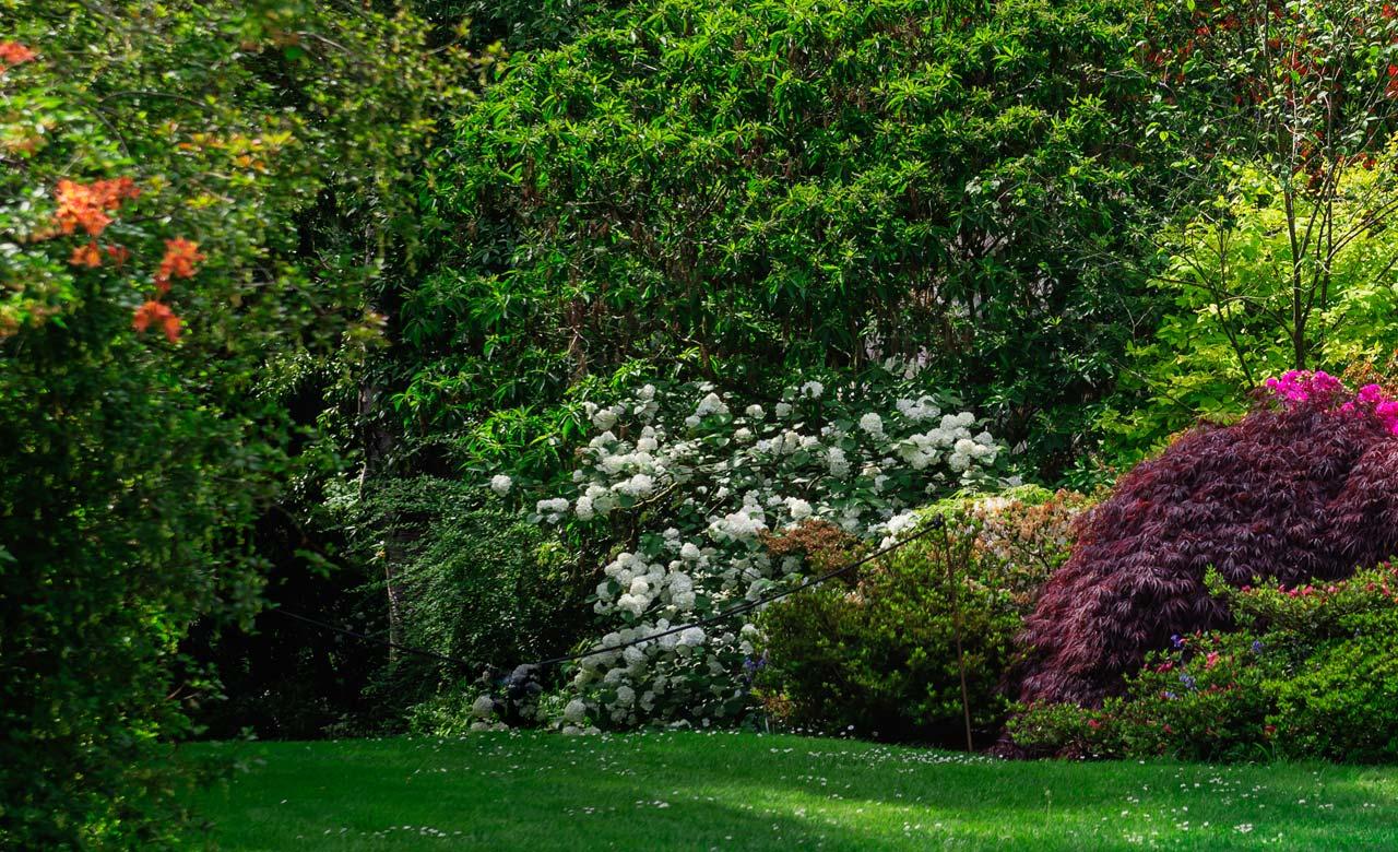 Gartengestaltung Nordhorn Niedersachsen
