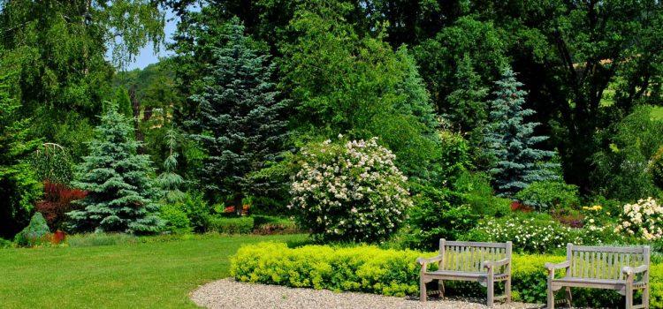Gartengestaltung Obertshausen Hessen
