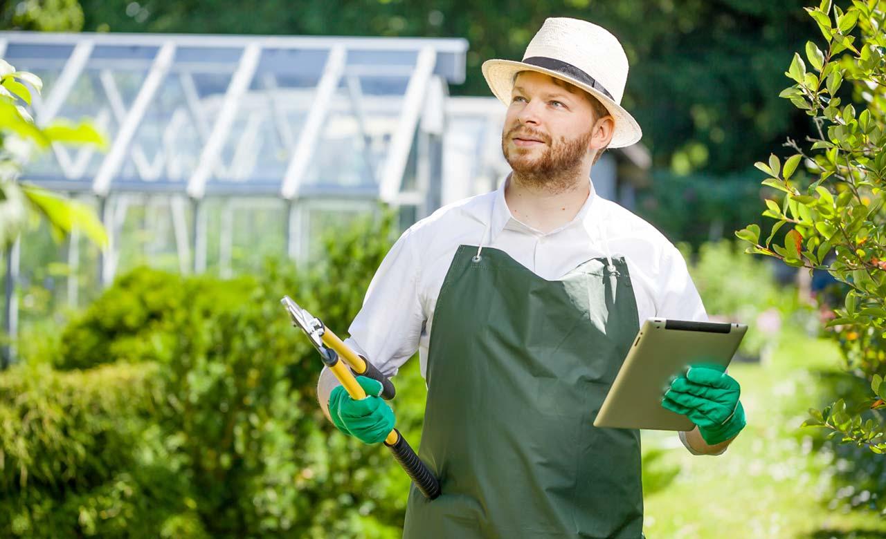 Gartenpflege Borken Nordrhein-Westfalen