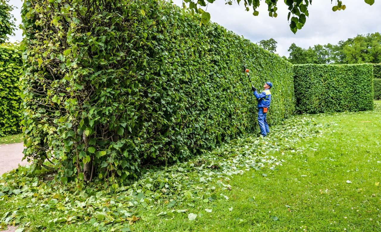 Gartenpflege Haan Nordrhein-Westfalen