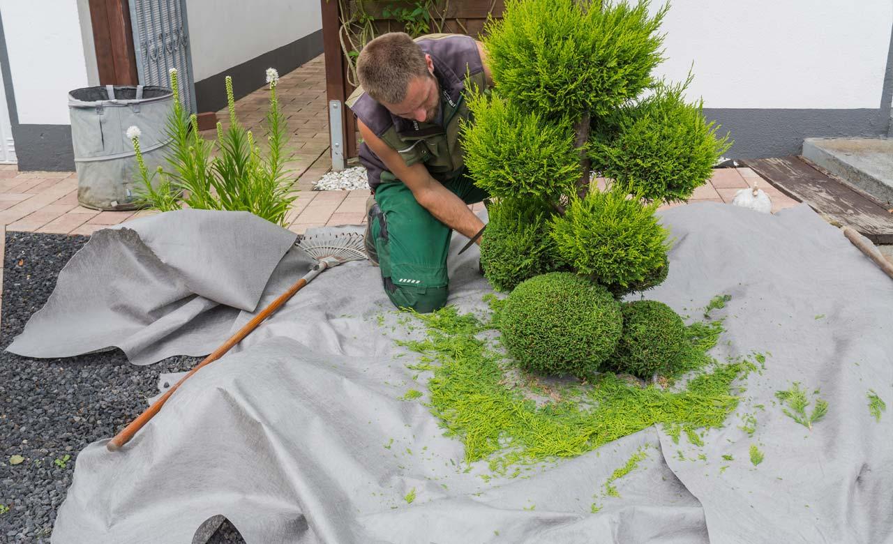 Gartenpflege Lichtenfels Bayern