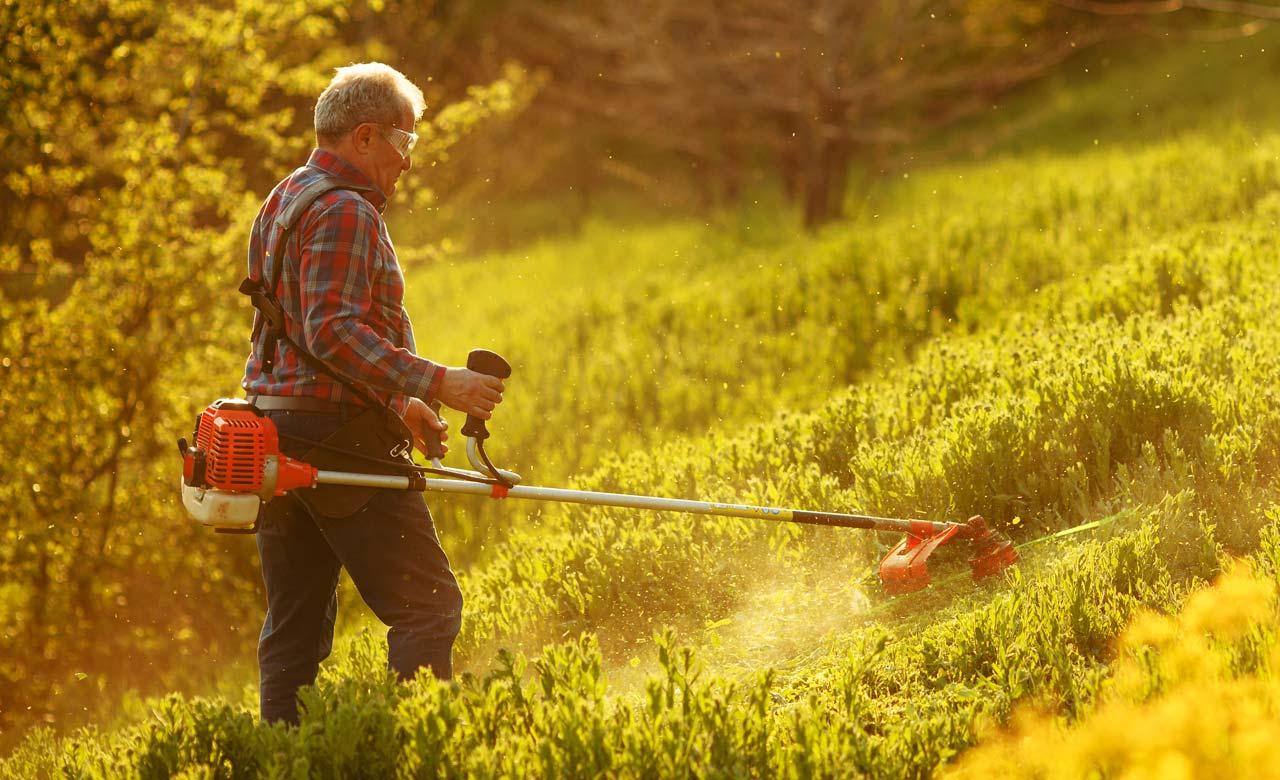 Gartenpflege Lohmar Nordrhein-Westfalen