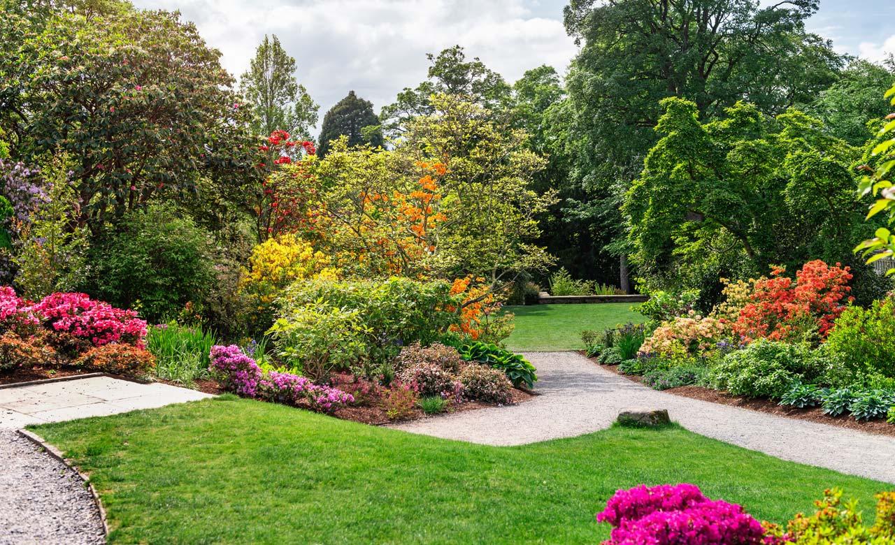 Gartenplanung Ilmenau Thüringen