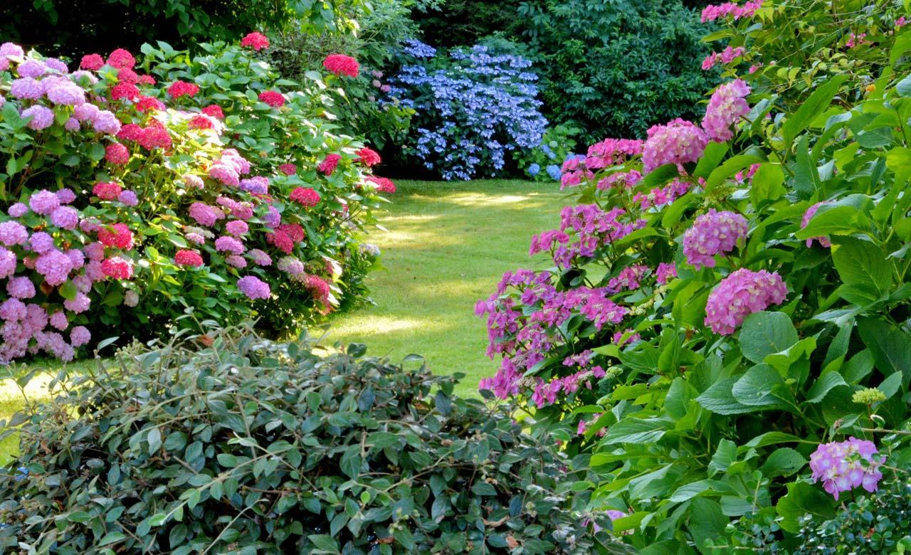Gartengestaltung Greven Nordrhein-Westfalen