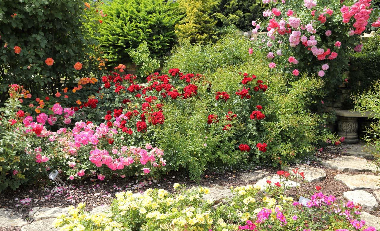 Gartengestaltung Petershagen Nordrhein-Westfalen