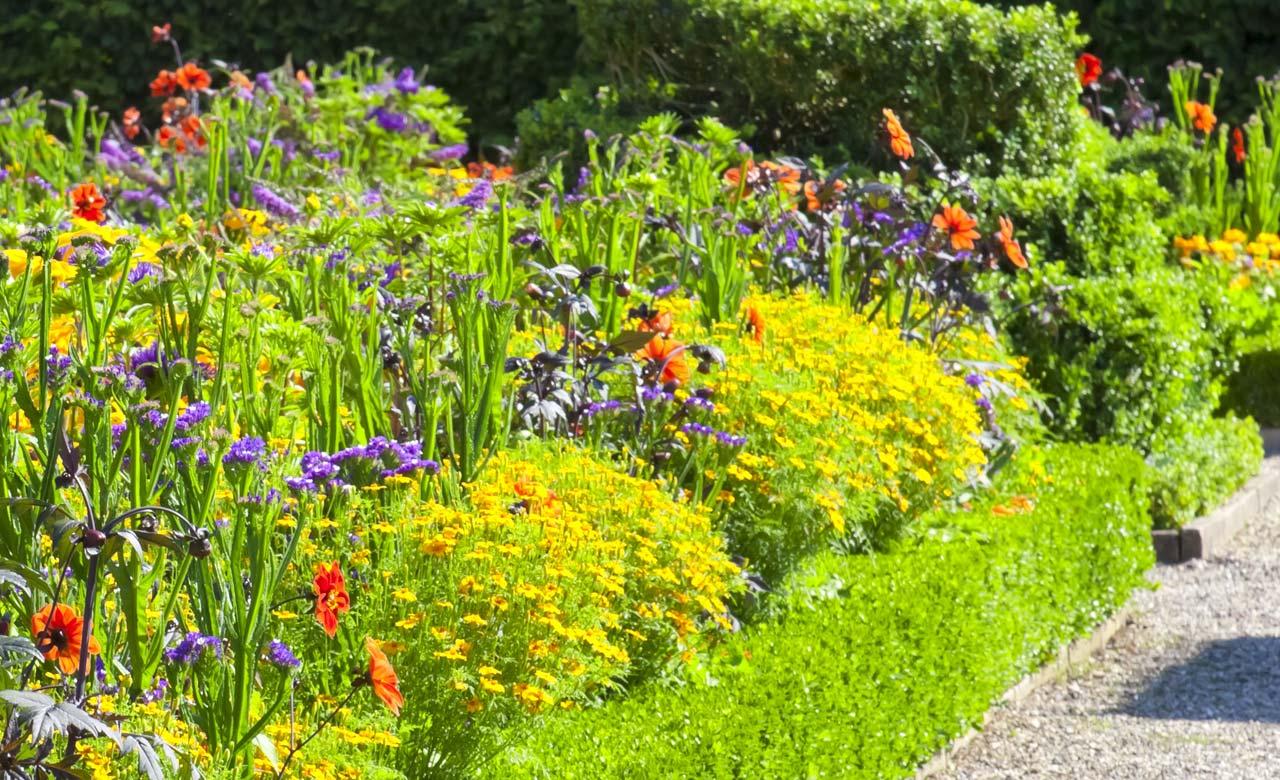 Gartengestaltung Plauen Sachsen