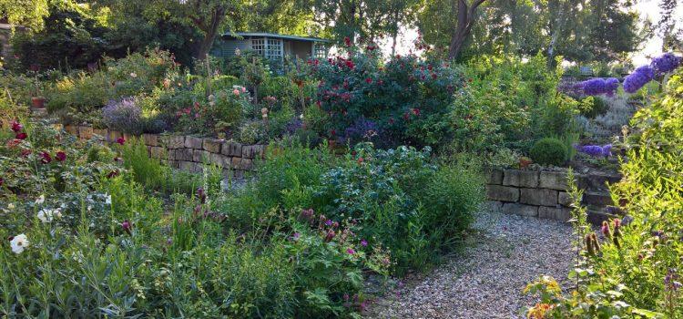 Gartengestaltung Sangerhausen Sachsen-Anhalt