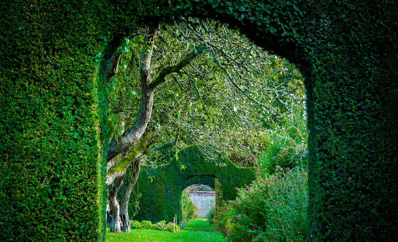 Gartengestaltung Schwandorf Bayern