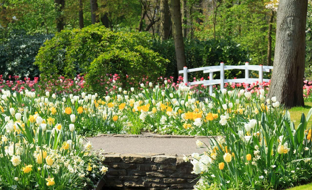 Gartengestaltung Wedel Schleswig-Holstein