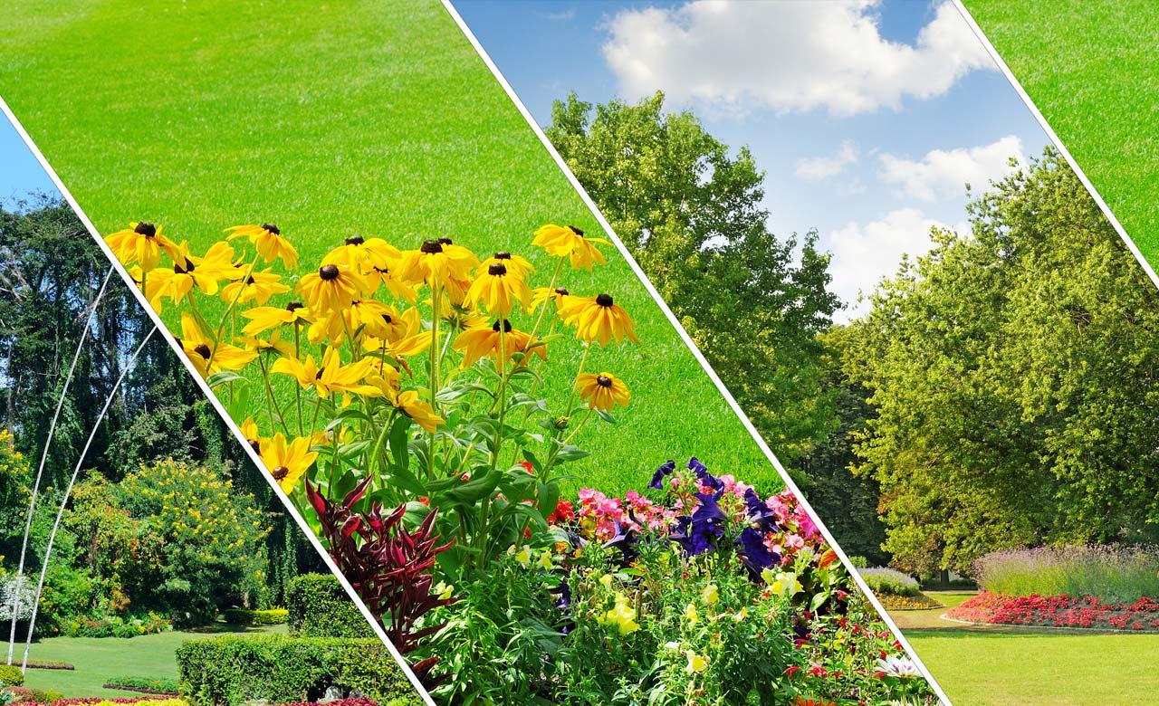 Gartenbau Osterholz-Scharmbeck Niedersachsen