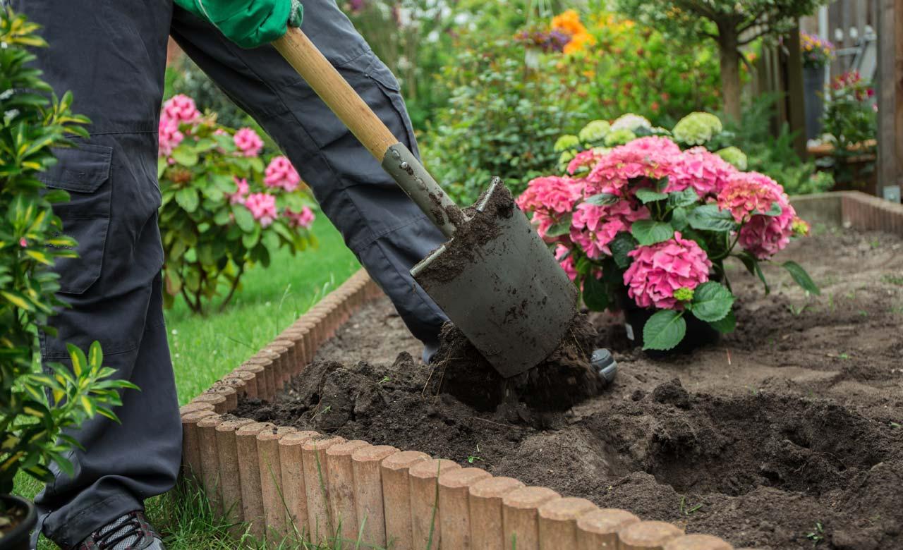 Gartenbauer Lemgo Nordrhein-Westfalen