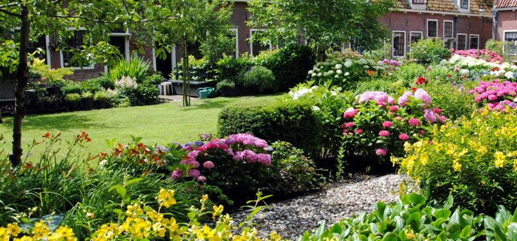 Gartengestaltung Lutherstadt Eisleben Sachsen-Anhalt