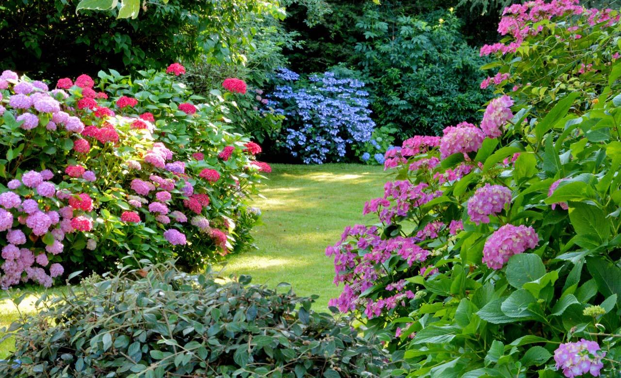 Gartengestaltung Plettenberg Nordrhein-Westfalen