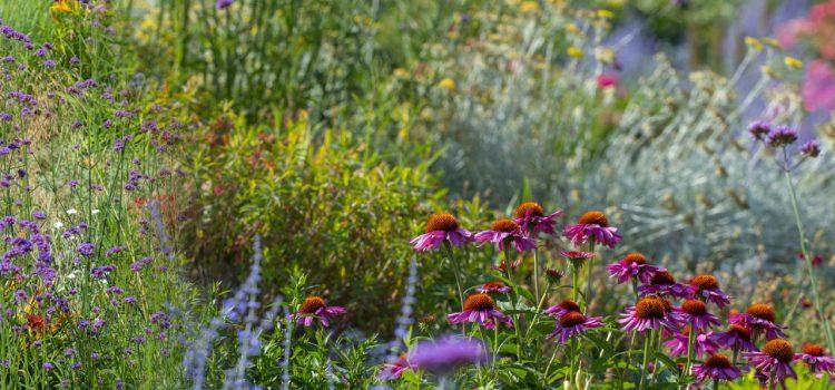 Gartengestaltung Rietberg Nordrhein-Westfalen