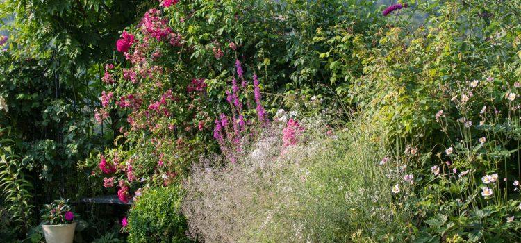 Gartengestaltung Rödermark Hessen