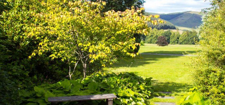 Gartengestaltung Werder Brandenburg