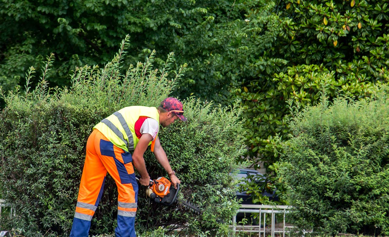 Gartenpflege Oelde Nordrhein-Westfalen