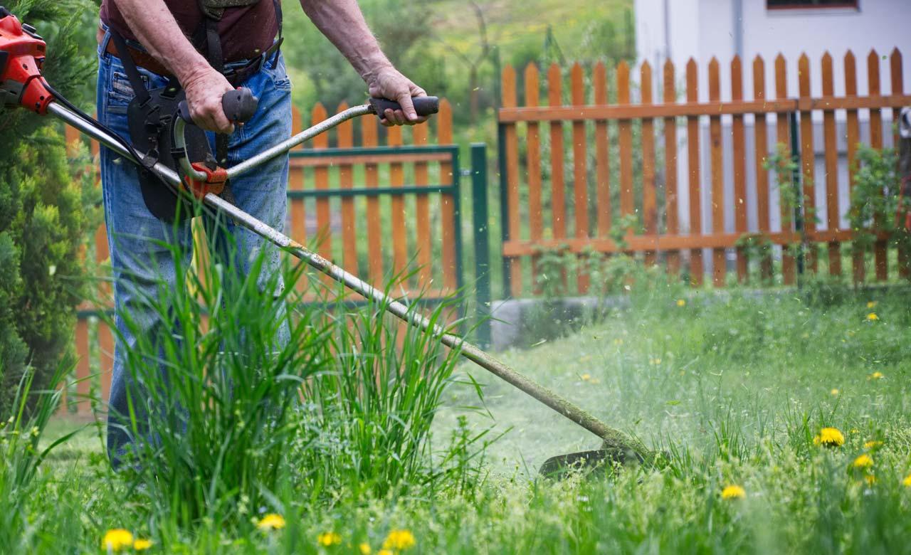 Gartenpflege Westoverledingen Niedersachsen