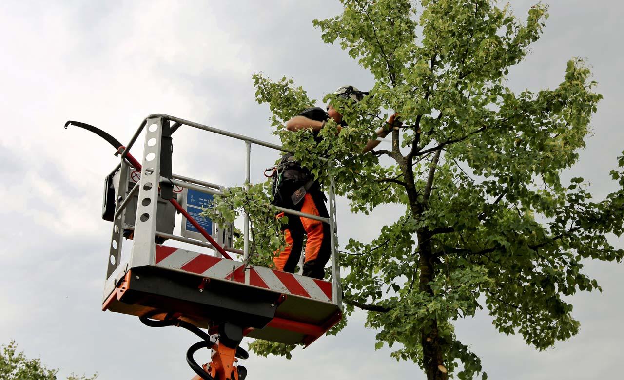 Gartenpflege Wetter Nordrhein-Westfalen