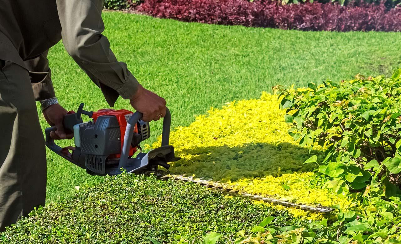 Gartenpflege Wiehl Nordrhein-Westfalen