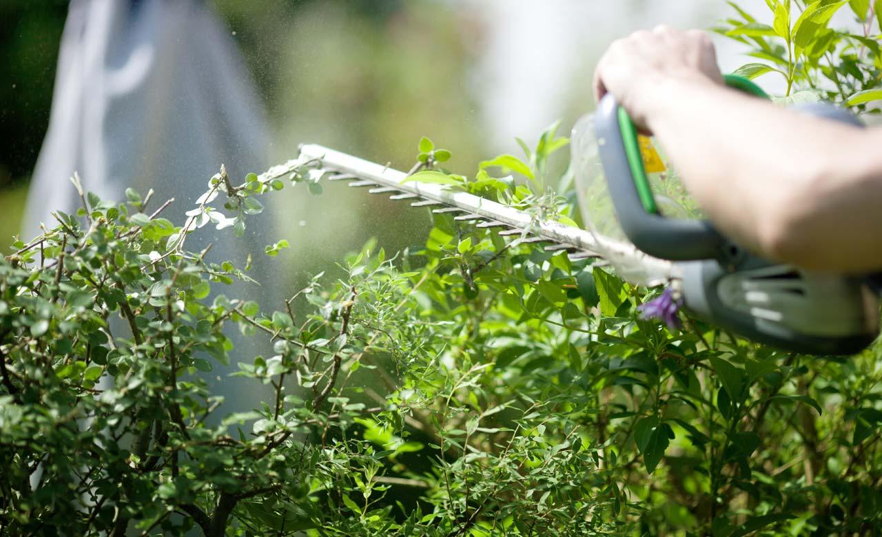 Gartenpflege Würselen Nordrhein-Westfalen