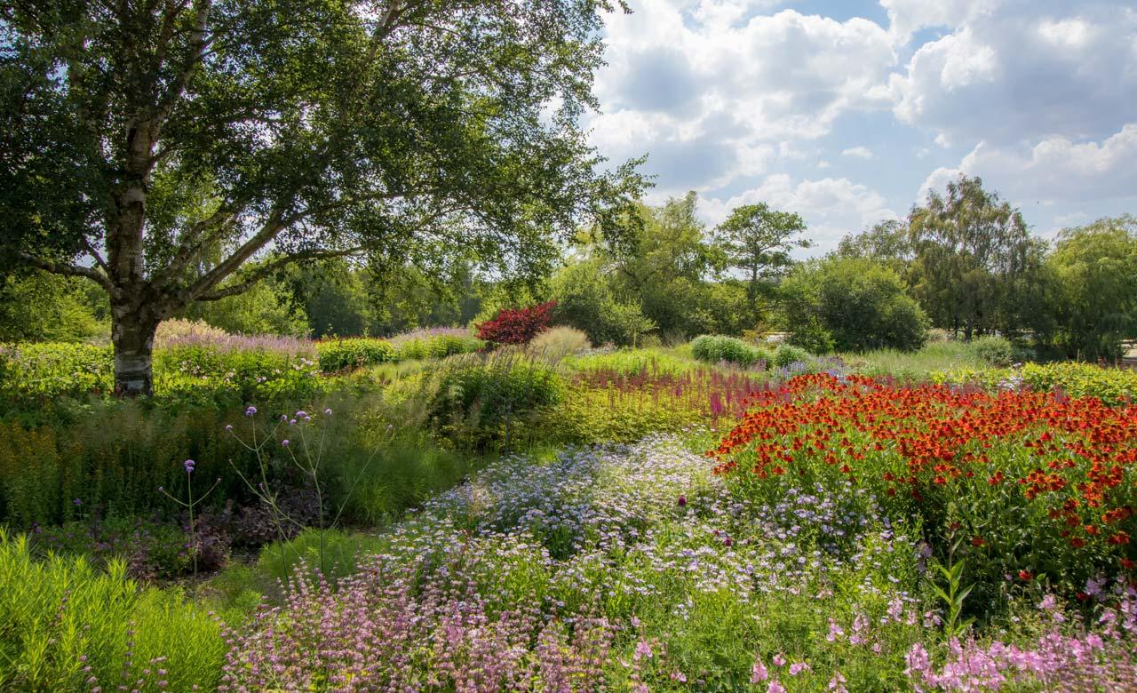 Gartenplanung Schwanewede Niedersachsen