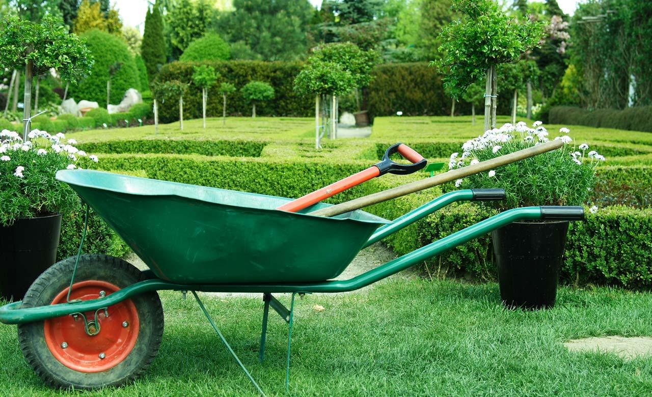 Gartenbau Freital Sachsen
