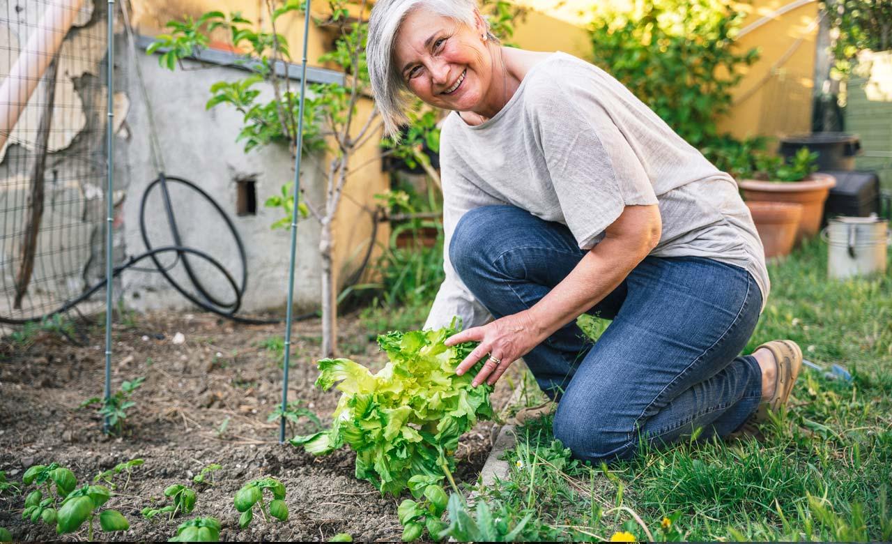 Gartenbauer Geldern Nordrhein-Westfalen