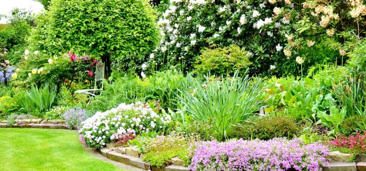 Gartengestaltung Brandenburg an der Havel