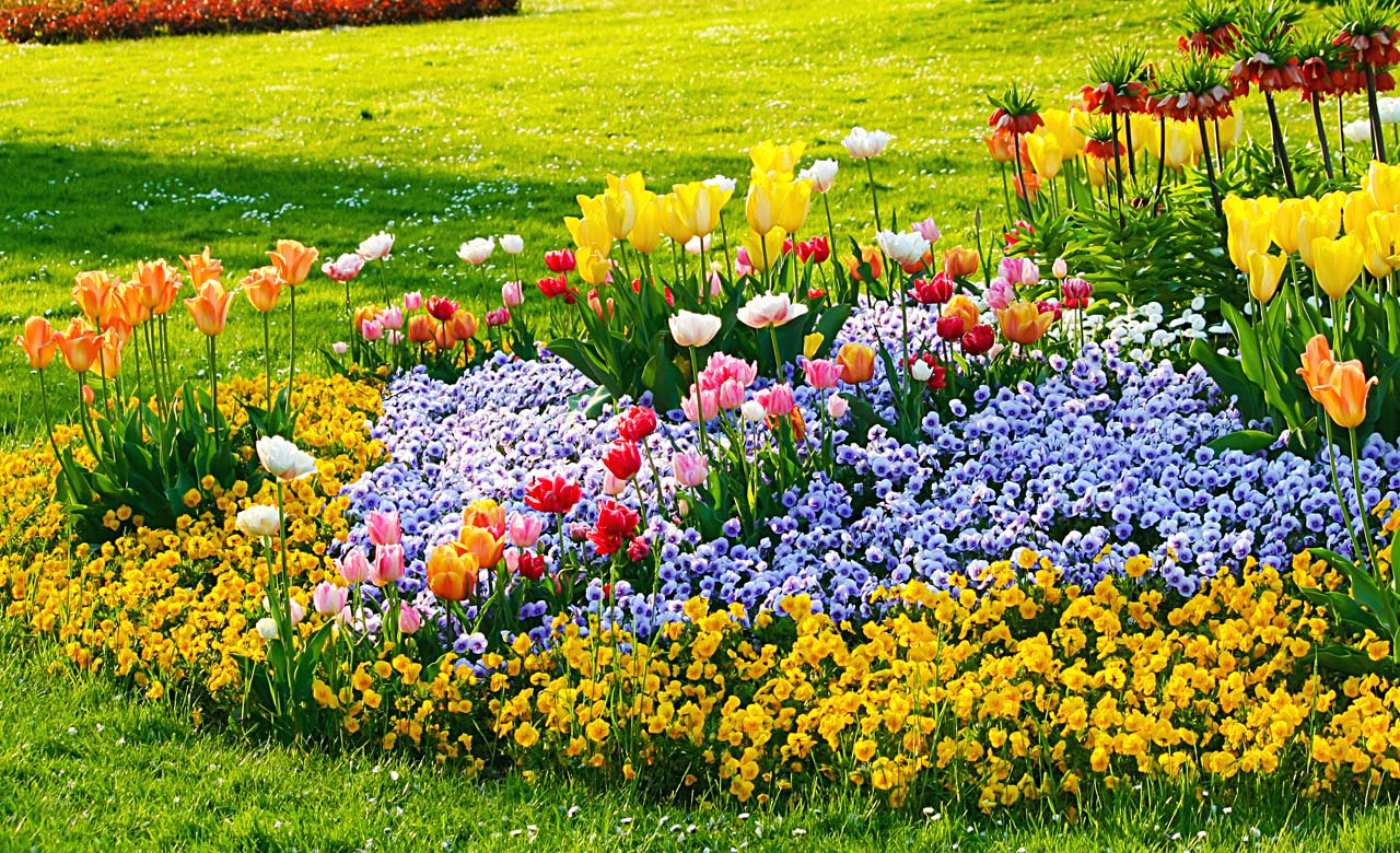 Gartengestaltung Duderstadt Niedersachsen