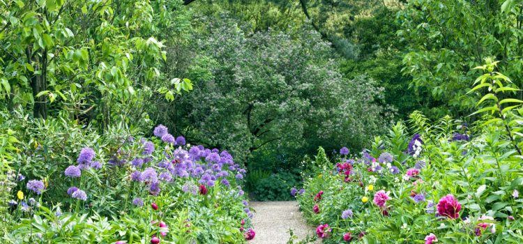 Gartengestaltung Gifhorn Niedersachsen