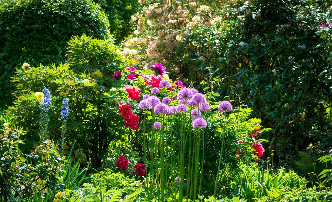Gartengestaltung Hoyerswerda Sachsen