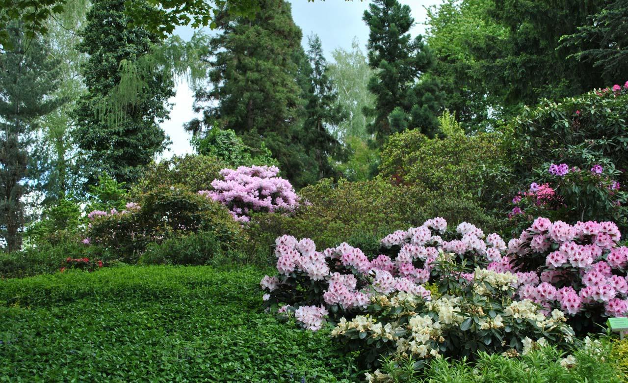 Gartengestaltung Tönisvorst Nordrhein-Westfalen
