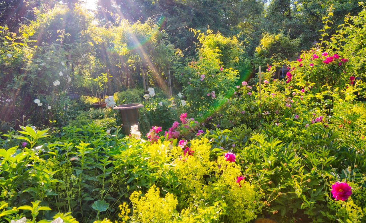 Gartengestaltung Traunreut Bayern