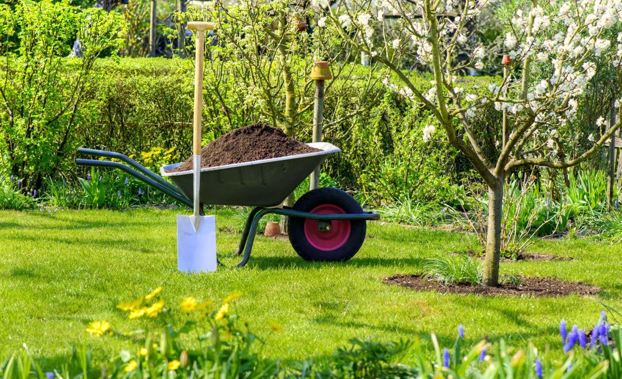 Gartengestaltung Zittau Sachsen