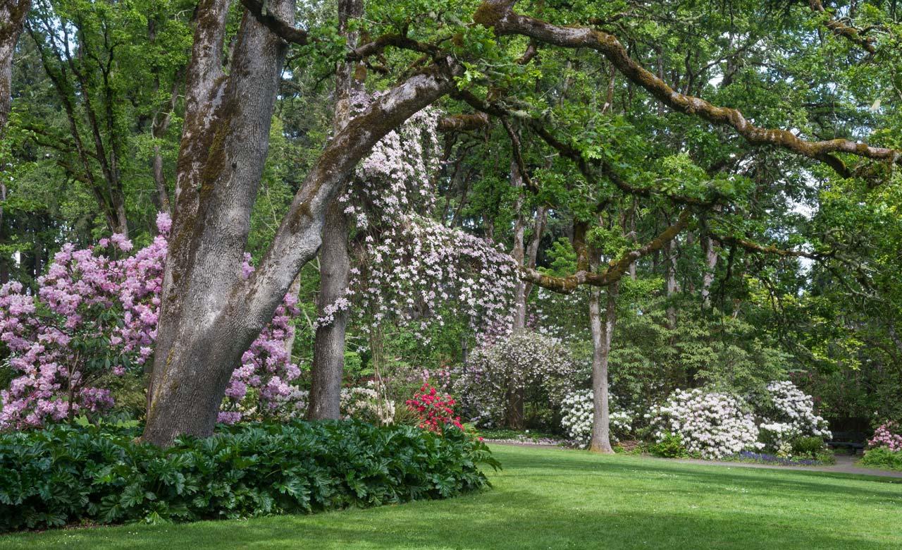 Gartenplanung Celle Niedersachsen