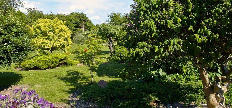 Gartengestaltung Nidderau Hessen