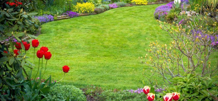 Gartengestaltung Radevormwald Nordrhein-Westfalen