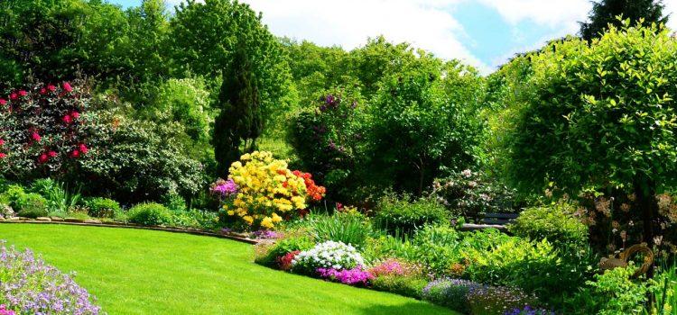 Gartengestaltung Troisdorf Nordrhein-Westfalen