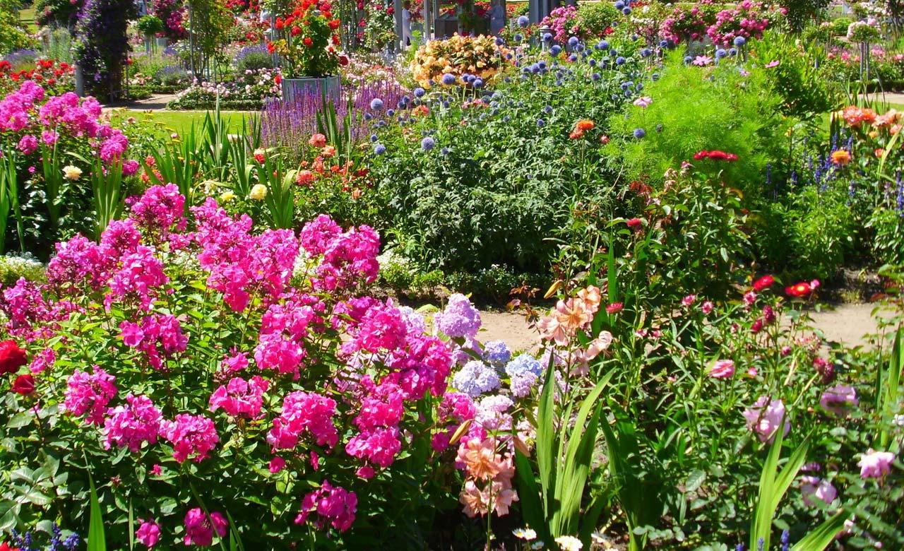 Gartengestaltung Limburg an der Lahn Hessen