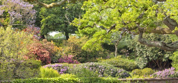 Gartengestaltung Wedemark Niedersachsen