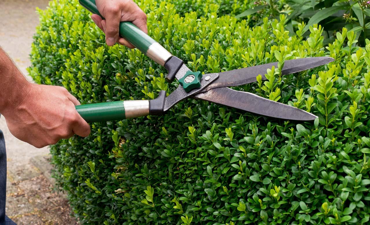 Gartenpflege Unterhaching Bayern